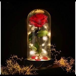 Beauty And The Beast Enchanted Rose Dome